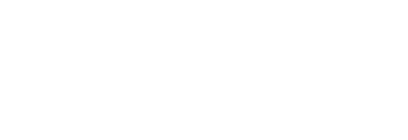 Зимовка авантюристы лого