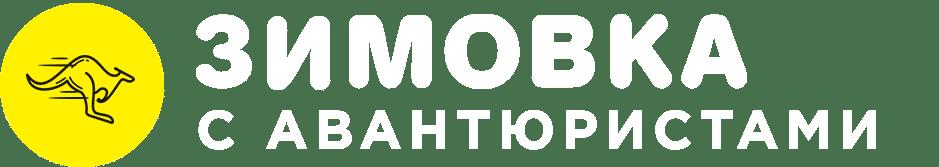 лого зимовка